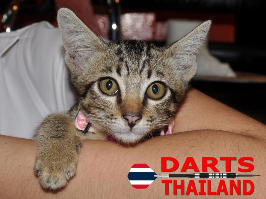 darts-photos-bangkok-thailand-darts-players-darts--leagues-photos-17_june_2011_003