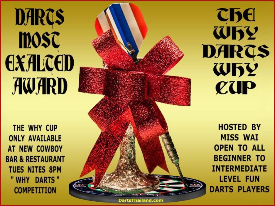 why-darts-2013-new-cowboy-bar (63)