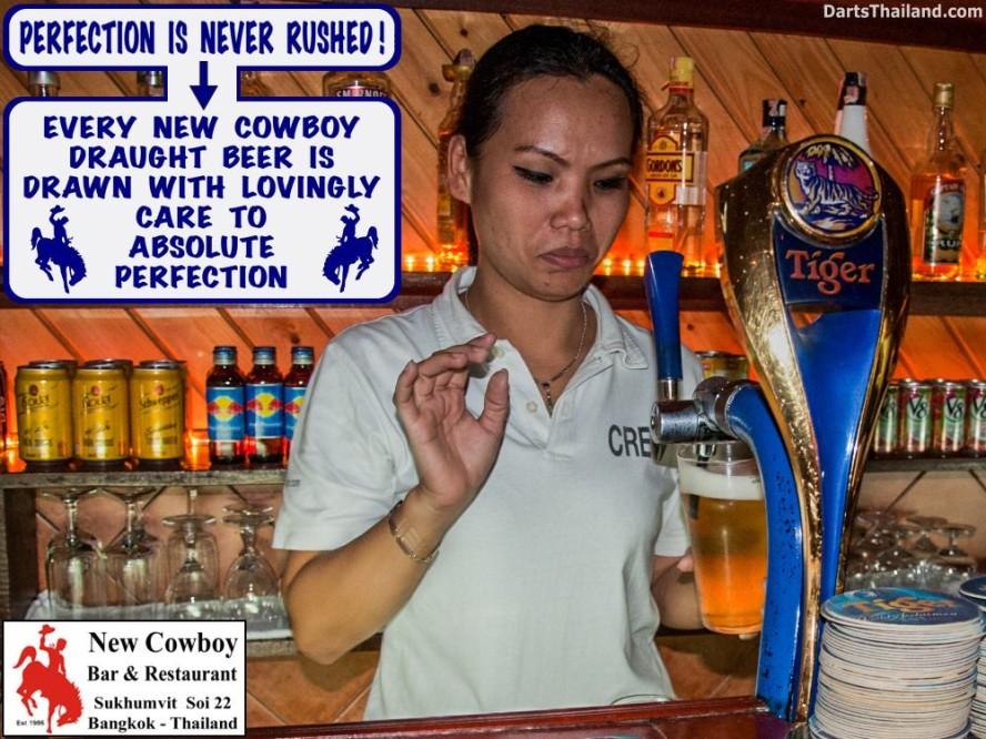 why-darts-2013-new-cowboy-bar (79)